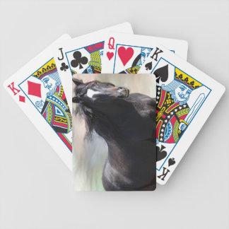 Bay Horse Card Deck