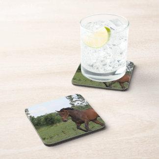 Bay Horse Design Cork Coasters