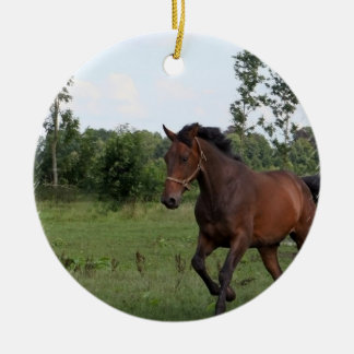 Bay Horse Design Ornament