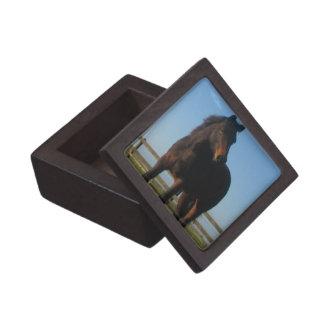 Bay Horse Gift Box Premium Keepsake Box