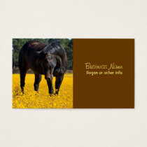 Bay Horse in a Field of Yellow Flowers Business Card