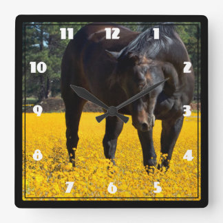 Bay Horse in a Field of Yellow Flowers Square Wall Clocks