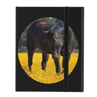 Bay Horse in a Field of Yellow Flowers iPad Covers