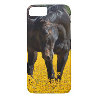 Bay Horse in a Field of Yellow Flowers iPhone 8/7 Case