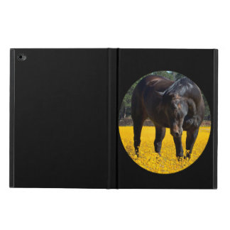 Bay Horse in a Field of Yellow Flowers Powis iPad Air 2 Case