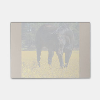 Bay Horse in a Field of Yellow Flowers Post-it® Notes