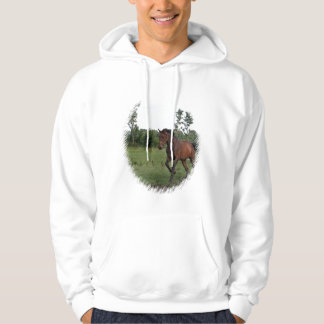 Bay Horse in a Field on a Hoodie