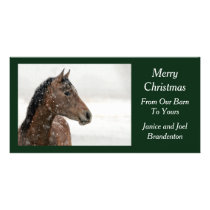 Bay Horse in Gently Falling Snow Card