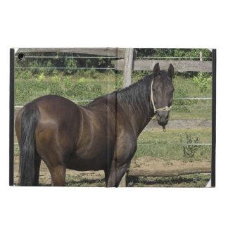 Bay Horse iPad Air Cover