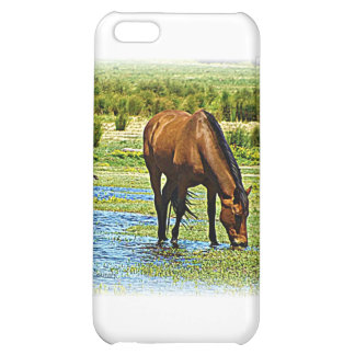 Bay Horse iPhone 5C Covers