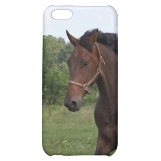 Bay Horse iPhone Case Case For iPhone 5C