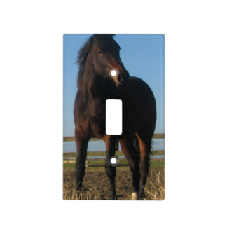 Bay Horse Light Switch Cover