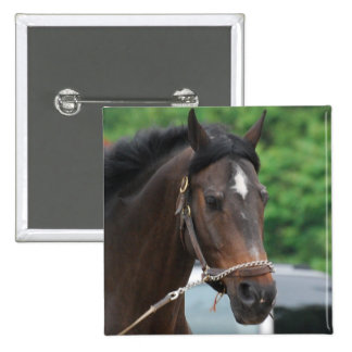 Bay Horse Lunging Pin