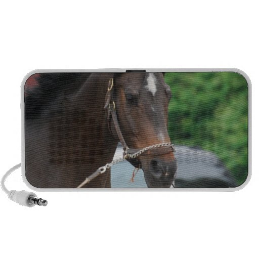 Bay Horse Lunging Portable Speakers