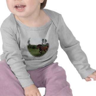 Bay Horse on Baby Shirt