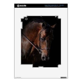 Bay Horse on Black iPad 3 Skin