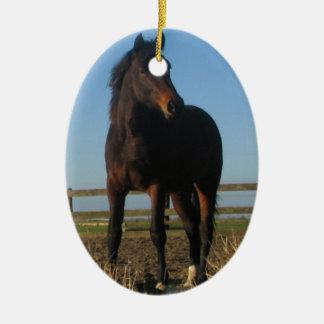 Bay Horse Ornament