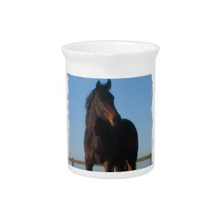 Bay Horse Pitcher