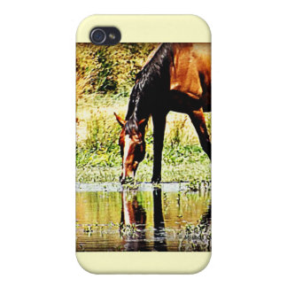 "Bay Horse ""Reflections"" iPhone 4/4S Covers"