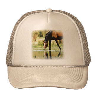 "Bay Horse ""Reflections"" Mesh Hat"