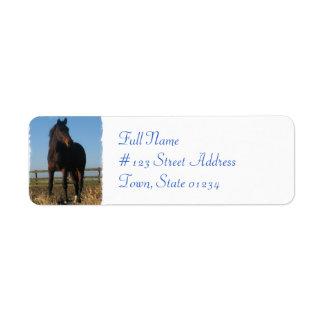 Bay Horse Return Address Label
