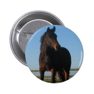 Bay Horse Round Button