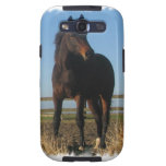 Bay Horse Samsung Galaxy Case Samsung Galaxy SIII Cases
