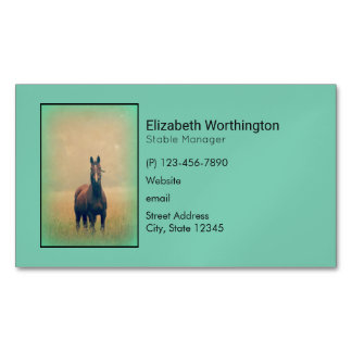 Bay Horse Standing in a Field Business Card Magnet