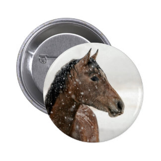 Bay Horse Standing in Gently Falling Snow Pinback Button