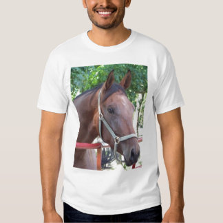 Bay Horse Tshirts