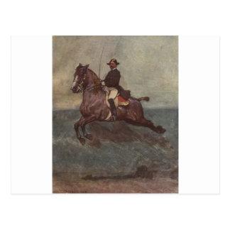 Bay Lipizzaner Dressage: Capriole Postcard