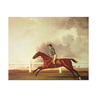 Bay Malton with John Singleton Up, c.1767 Canvas Print