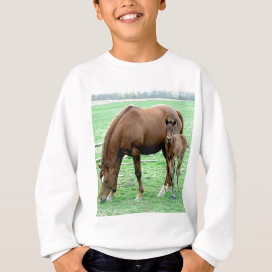 Bay Mare and Her Colt Sweatshirt