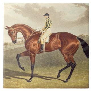 Bay Middleton, winner of the Derby in 1836, after Ceramic Tile