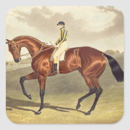 Bay Middleton, winner of the Derby in 1836, after Square Sticker