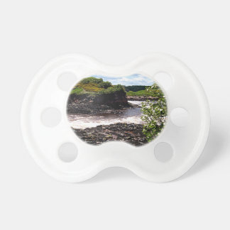 Bay of Fundy Pacifier