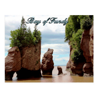 Bay of Fundy Postcard