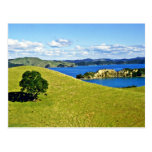 Bay Of Islands, North Island Postcards