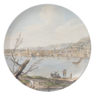 Bay of Naples from sea shore near the Maddalena Br Party Plates