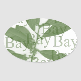 Bay-Olive Oval Sticker