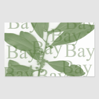 Bay-Olive Rectangular Sticker