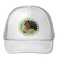 Bay Paso Fino Baseball Hat