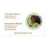 Bay Paso Fino  Business Card