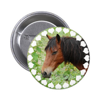 Bay Paso Fino  Button