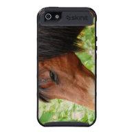 Bay Paso Fino iPhone 4 Case