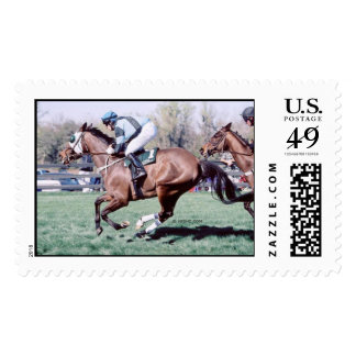 Bay Racehorse at Little Everglades Steeplechase Postage Stamp