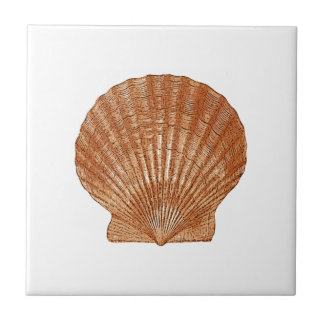 Bay Scallop Shell Ceramic Tile