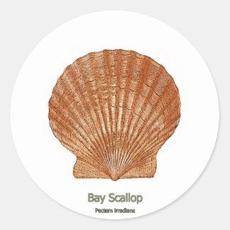 Bay Scallop Shell Classic Round Sticker