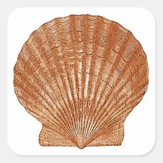 Bay Scallop Shell Square Sticker
