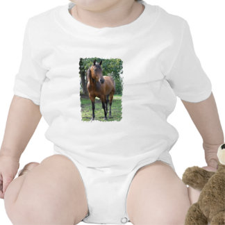 Bay Thoroughbred Horse Baby T-Shirt
